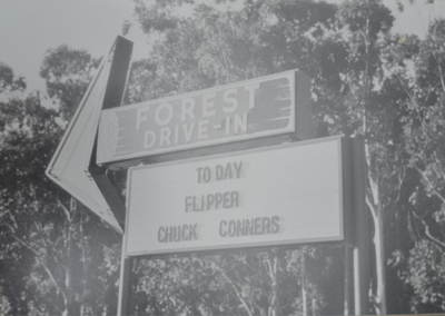 Forest Drive in