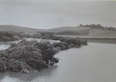 Lagoon 1964